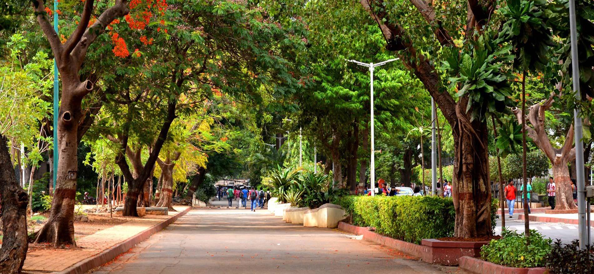 Street Campus Banner