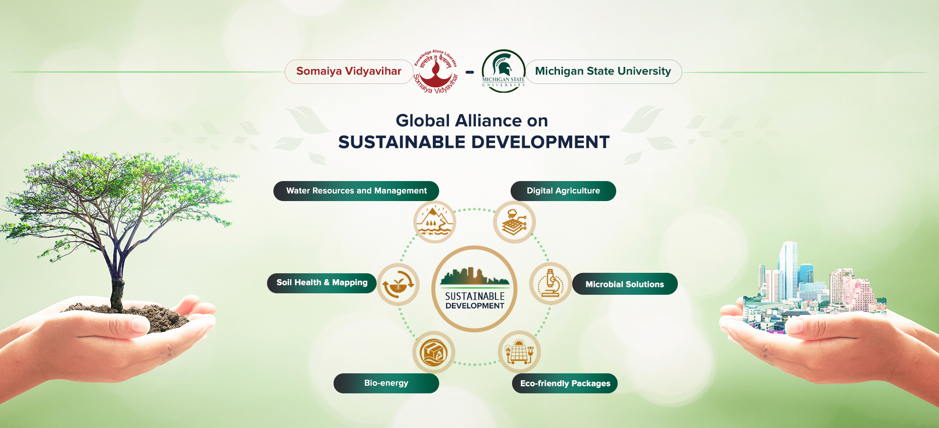 Global Alliance on Sustainable development
